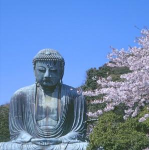 08b-buddha-cherry-blossom