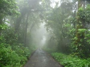 feba9854b5-rain-scenery98eb765